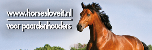 Header horsesloveit 2