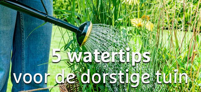 watertips_dorstige_tuin