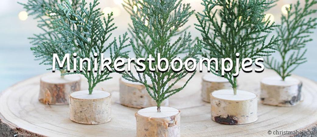 Tips voor groene kerstbomen KLIK op afbeelding
